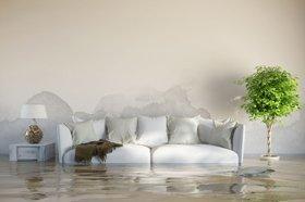 Water Damage Repair Sierra Vista